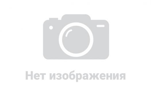 Куда пропал Ануар Нурпеисов